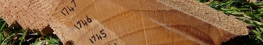 A selection of images related to dendrochronology (tree-ring dating)